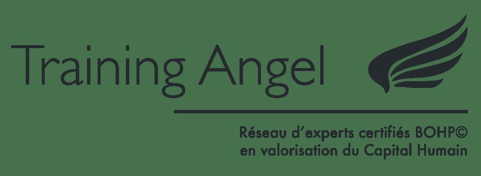 Logo Training angel